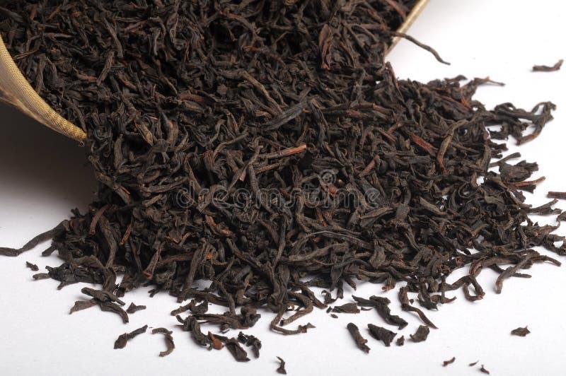 Dry tea leaf. Dry black tea leaf background royalty free stock image