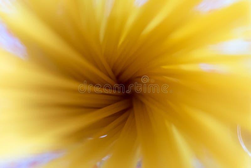 Spaghetti in close up stock photo