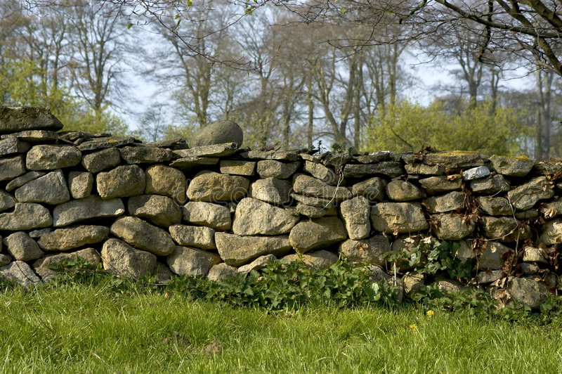 Download Dry wall stock image. Image of farms, walls, weeds, trees - 115107