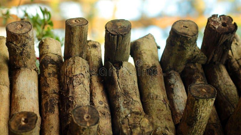 Dry wood ready to burn stock photo