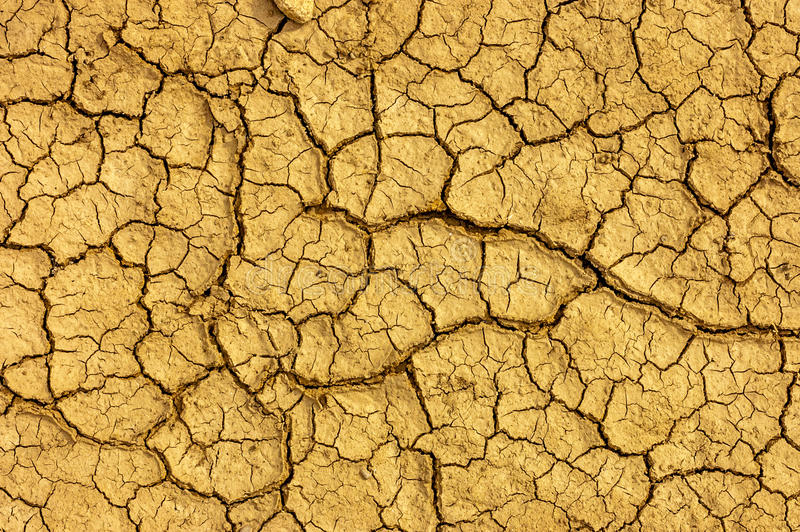 Dry yellow cracked earth texture. royalty free stock image