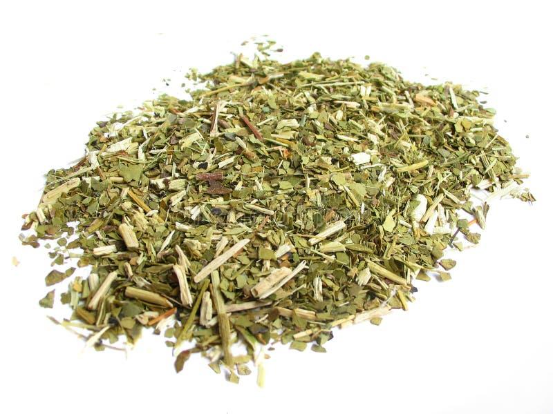 Dry yerba mate leaves stock image