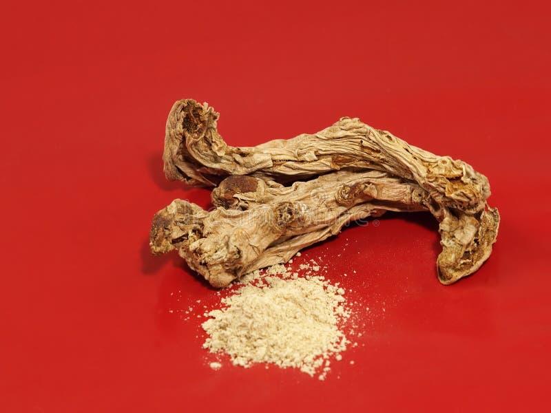 Download Dry zingiber. stock image. Image of medicine, ground - 25572801