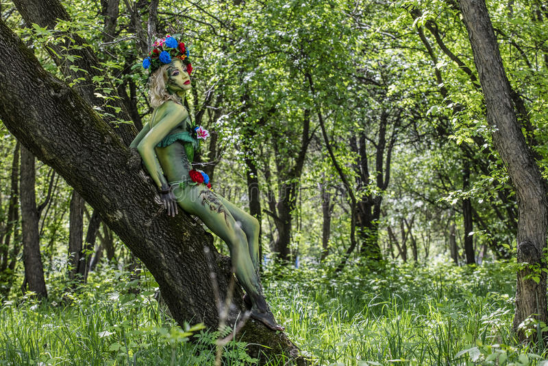 Dryade sur l'arbre dans un jardin sauvage un avec la nature verte photographie stock
