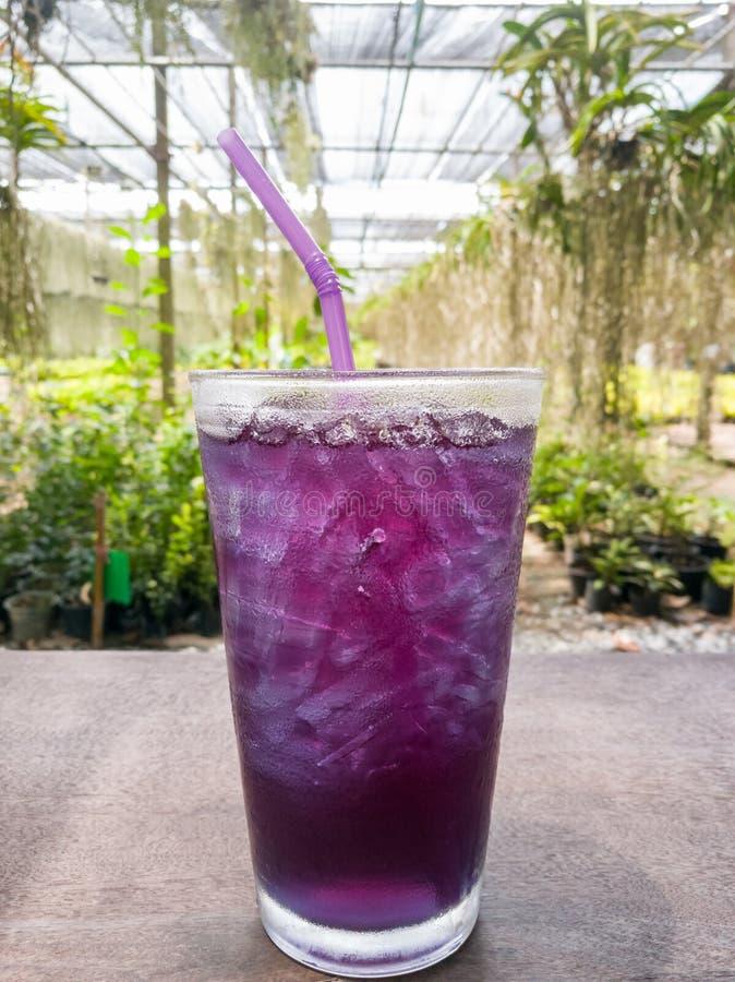 Dryck för isfjärilsärta som är sund på tabellen royaltyfria foton