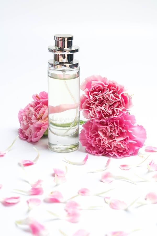 Dryckflaskor och rosa nejlikor på vit bakgrund royaltyfri fotografi