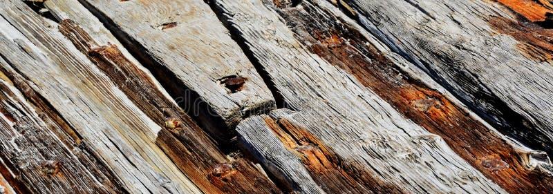 Dryftowy drewno zdjęcie stock