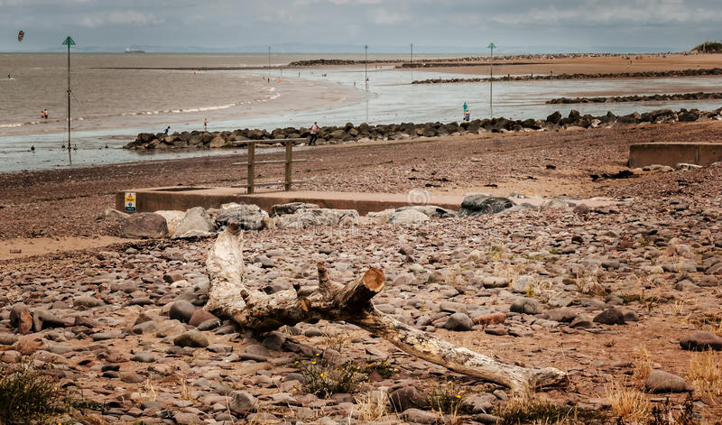 Dryftowy drewno w Minehead plaży zdjęcia stock