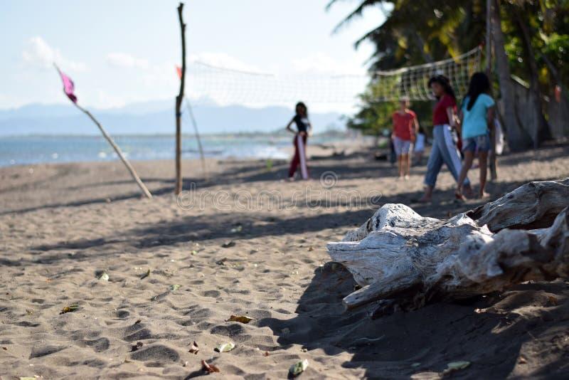 Dryftowy drewno zaciemnia widok ludzie bawić się siatkówkę na seashore obrazy stock