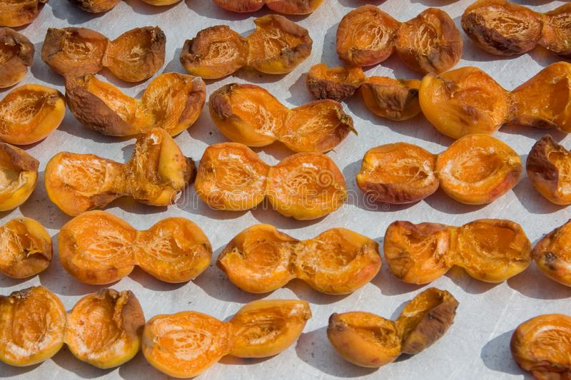 Drying apricot in the sun. Apricot halves are spread out on a metal sheet and dried in the sun. Close-up. Summer. outdoor stock photos