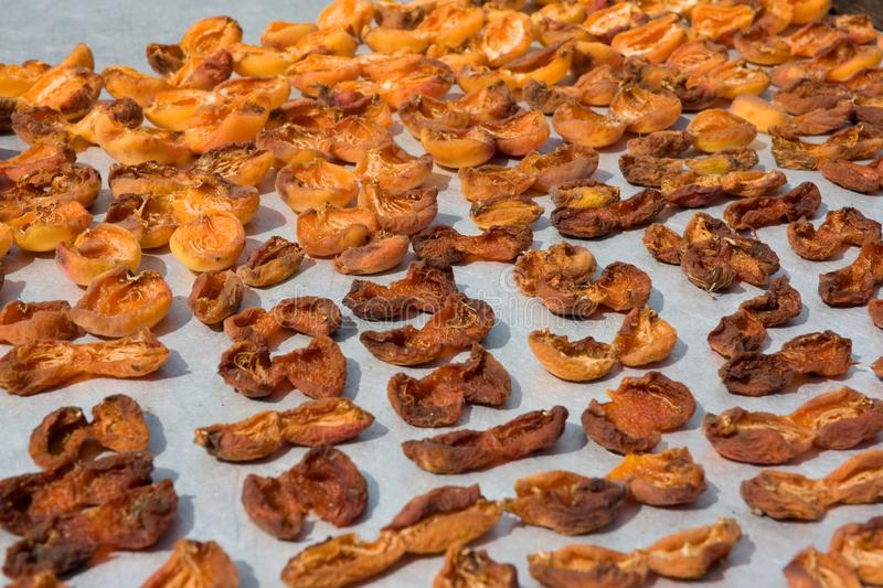 Drying apricot in the sun. Apricot halves are spread out on a metal sheet and dried in the sun. Close-up. Summer. outdoor royalty free stock photography