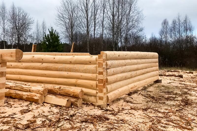 Drying and assembly of wooden log house at a construction base stock photography