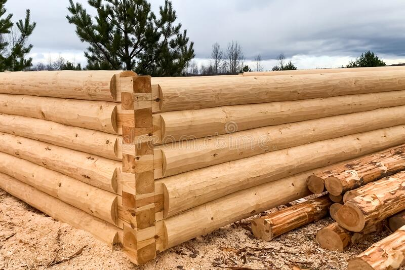 Drying and assembly of wooden log house at a construction base royalty free stock photo