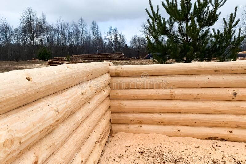 Drying and assembly of wooden log house at a construction base royalty free stock images