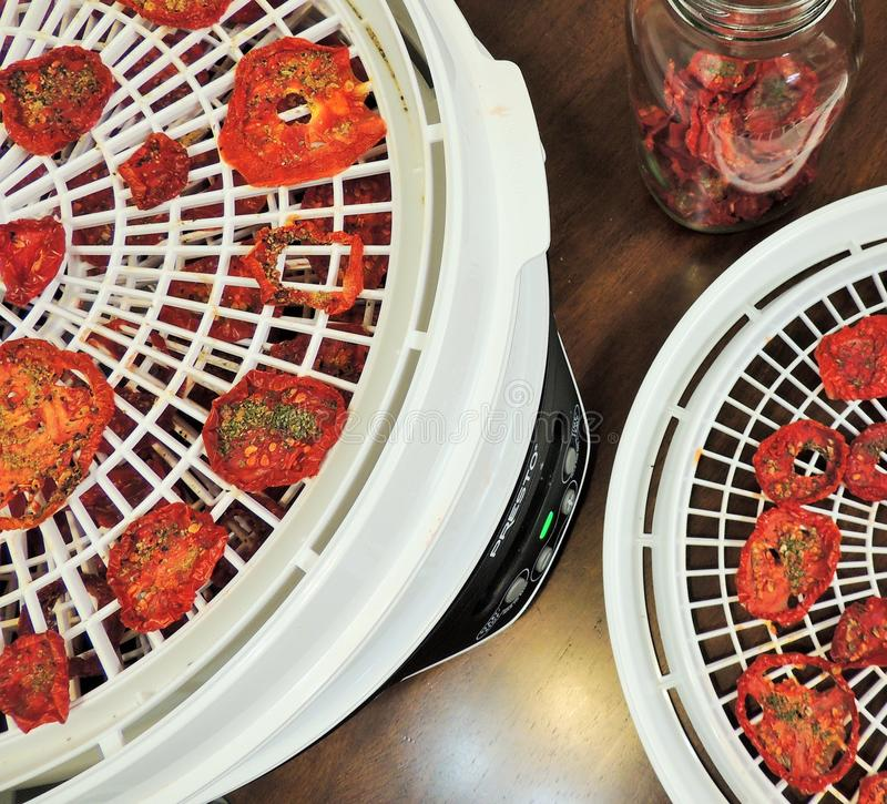 Drying and conditioning tomatoes royalty free stock images