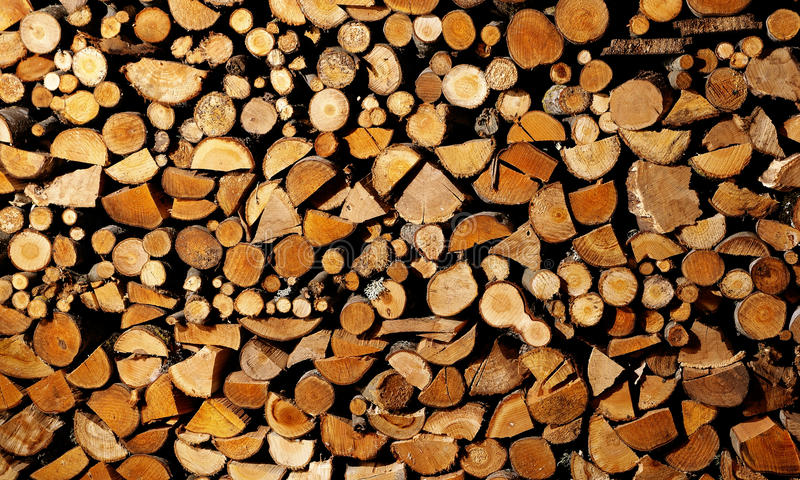 Download Drying Firewood Stock Photo - Image: 14808400