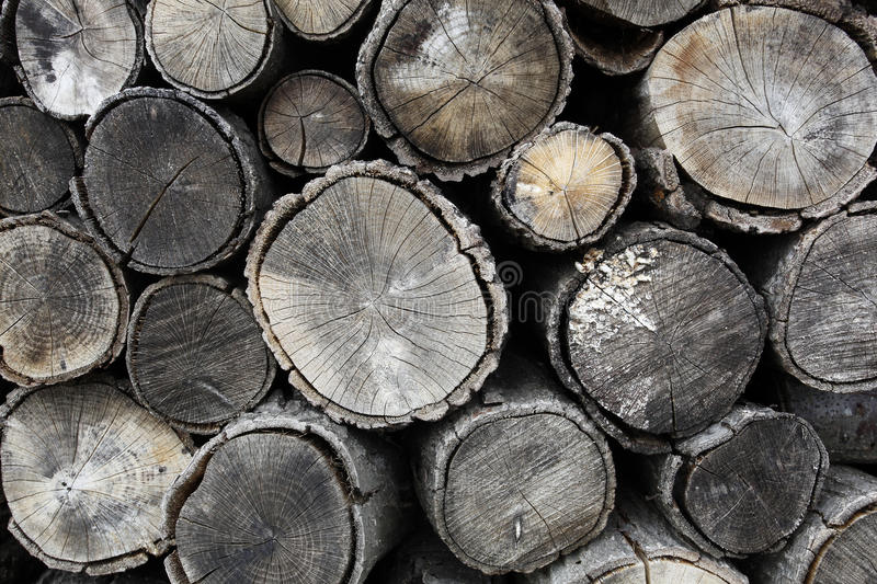Drying firewood royalty free stock images