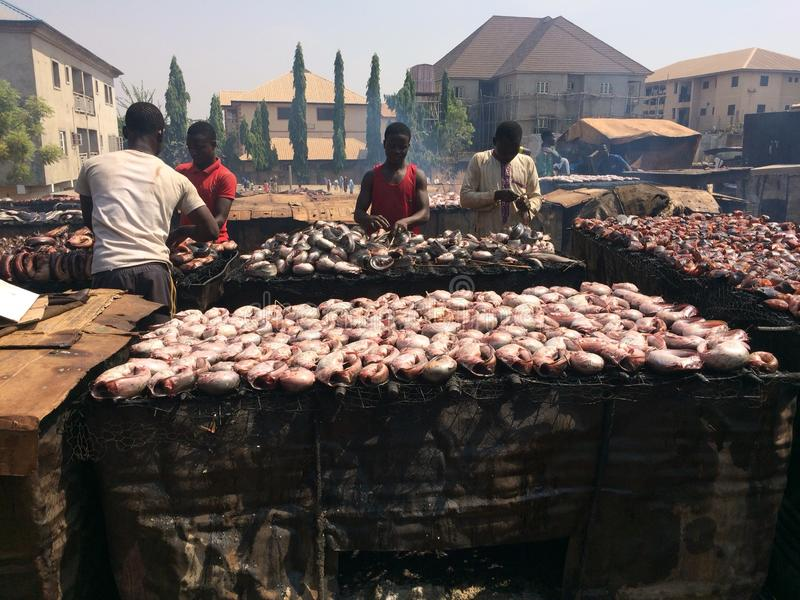 Drying of fish by smoking. In a residential area of Abuja, Nigeria. The smoke also leads to environmental pollution royalty free stock photography