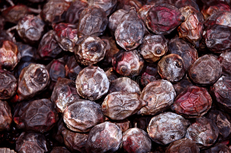 Drying Foxtail palm seeds stock photos