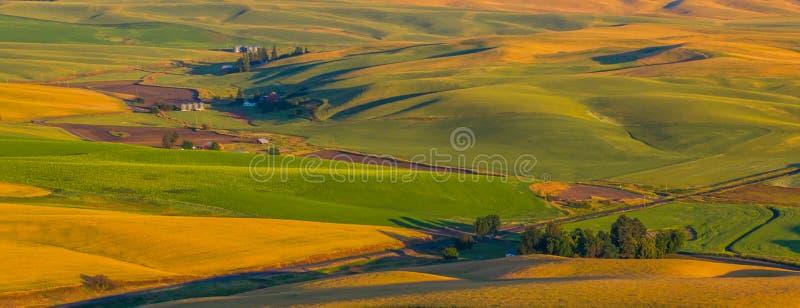 Dryland de Landbouw stock foto