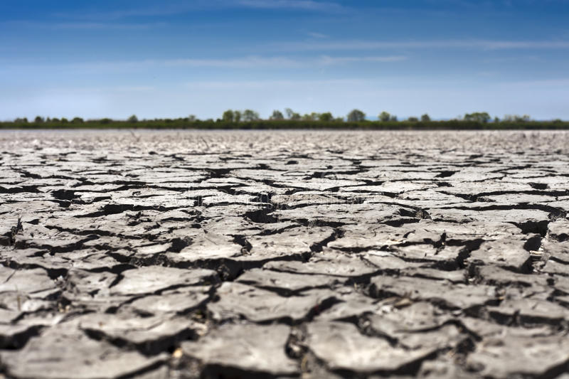 Download Dryness stock image. Image of countryside, scene, shaky - 25381901