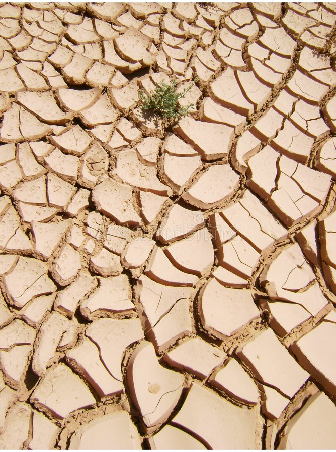 Dryness. Photograph illustrating the dryness of the earth, environmental proleme stock images