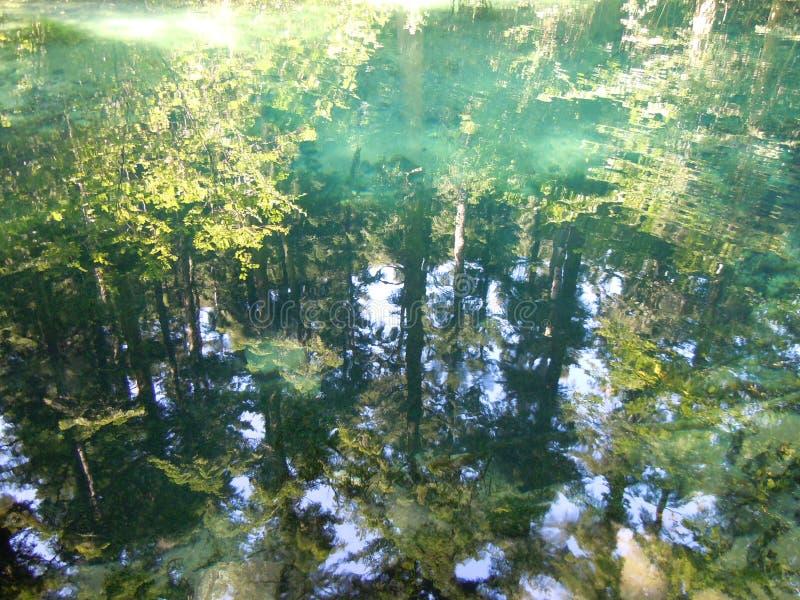 Drzewa, barwi?, za?wiecaj?, i cienie odbijaj? w Beiu Oko jeziorze fotografia stock