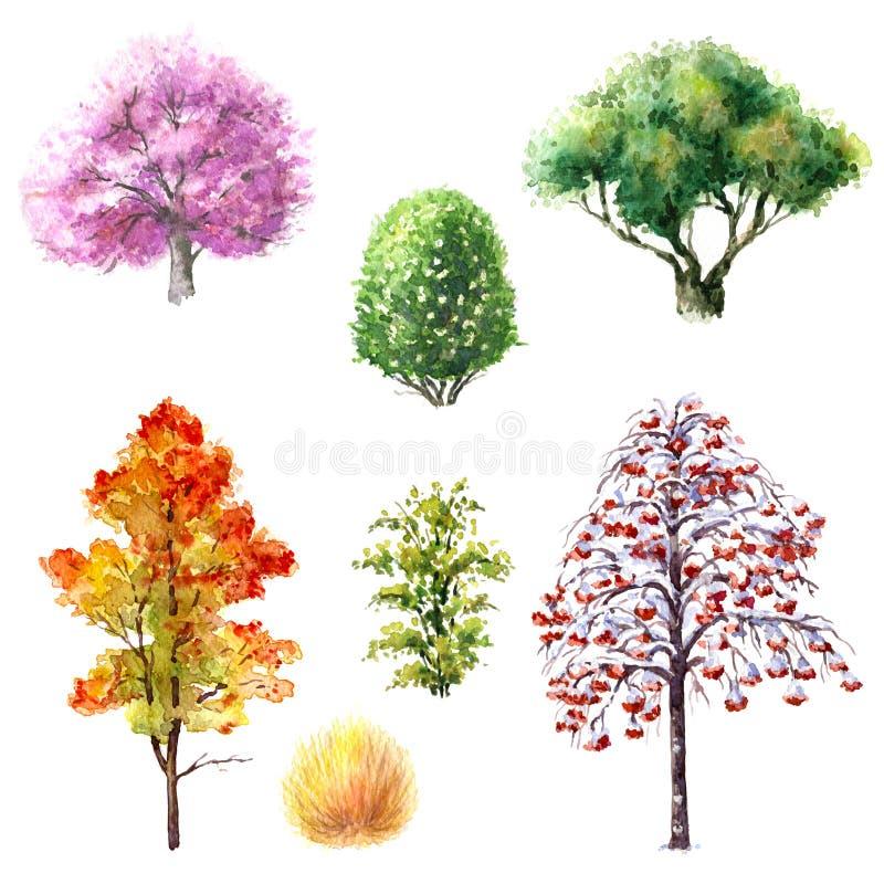 Drzewa i krzaki podczas różnych sezonów royalty ilustracja