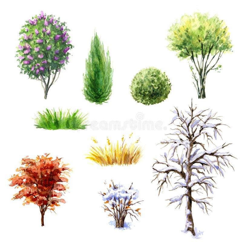 Drzewa i krzaki podczas różnych sezonów ilustracji