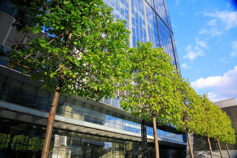 Drzewa i nowożytny szklany biznesowy budynek zdjęcia royalty free