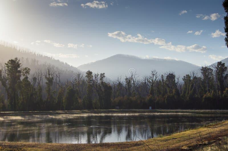 Drzewa i wzgórza odbijali w jeziorze blisko Marysville, Australia zdjęcia royalty free