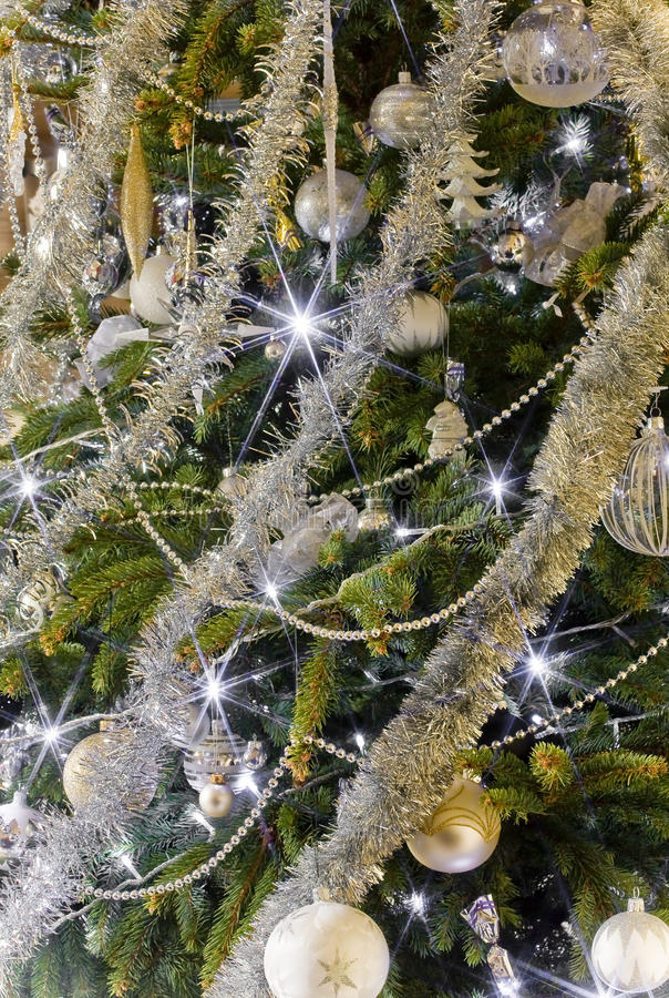 drzewa magiczny xmas obraz royalty free