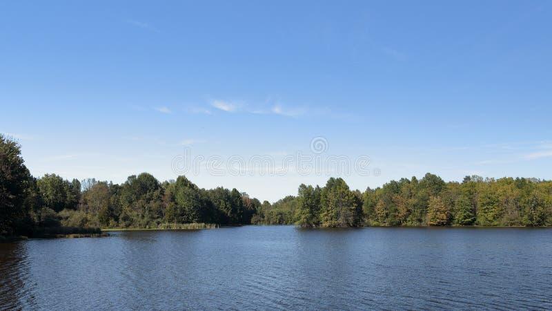 Drzewa na brzeg błękitny jezioro w późnym lecie obraz stock