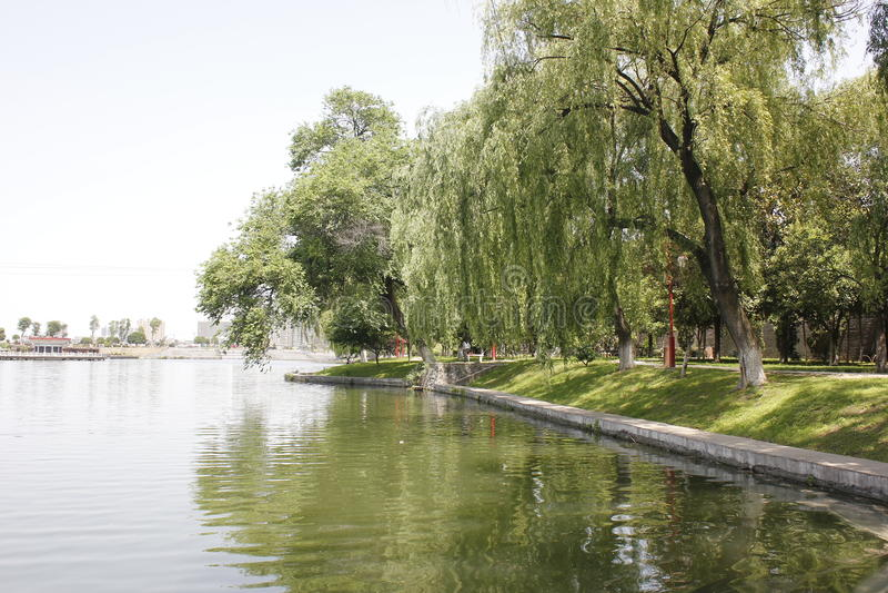 Drzewa Odbija na jeziorze miasto fosa Xiangyang, Chiny (,) zdjęcie stock