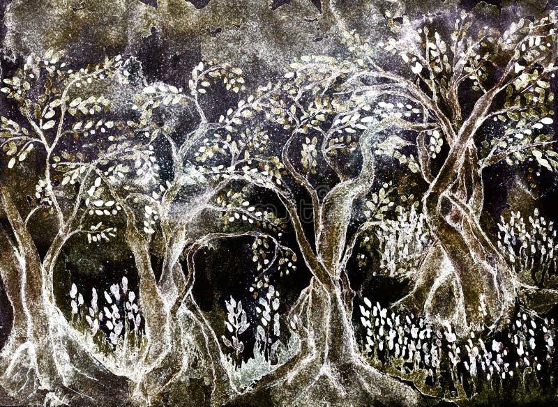 Drzewa oliwne w zimie zdjęcia stock