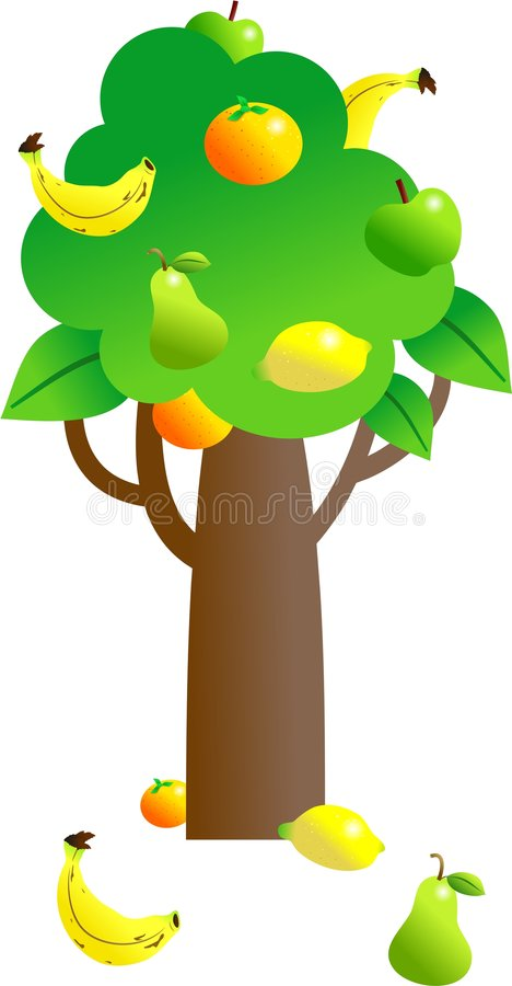 drzewa owocowe ilustracji