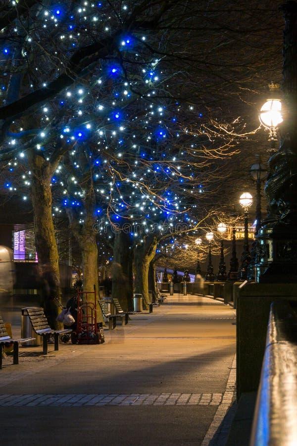 Drzewa przy Londyn południe bankiem obrazy royalty free