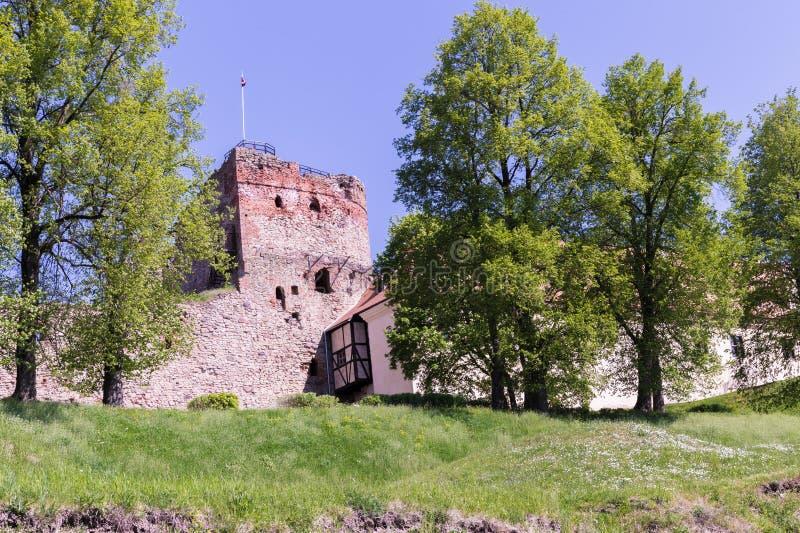 Drzewa przy wierzchołkiem i ruiny za one fotografia stock