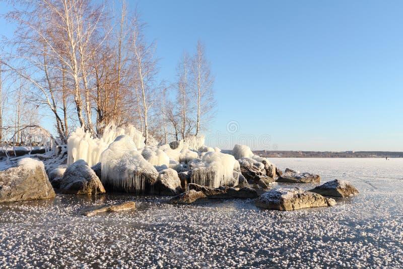 Drzewa stoi na kamieniach zakrywających z lodem na riverbank zdjęcia royalty free
