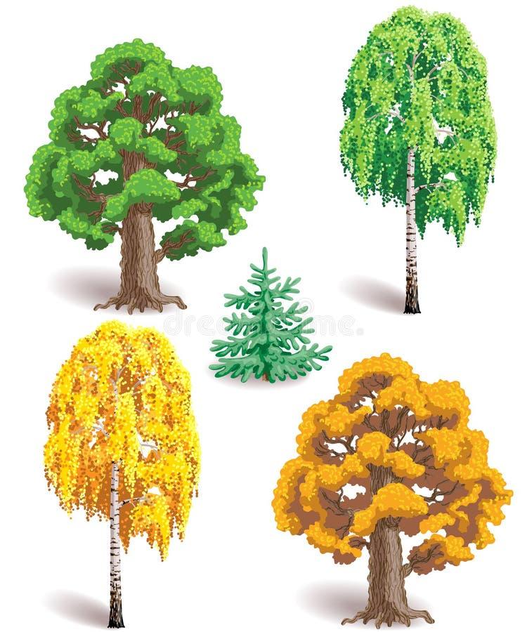 Drzewa w lecie i jesieni ilustracja wektor