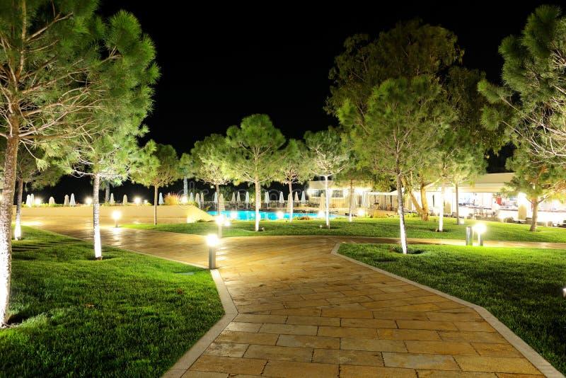 Drzewa w nocy iluminaci przy luksusowym hotelem zdjęcie royalty free