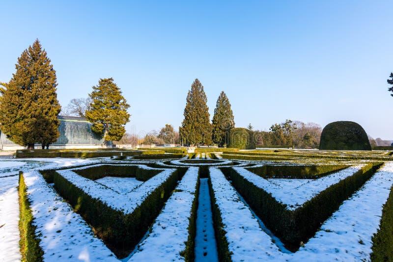 Drzewa w parku, zimie i niebieskim niebie Lednice kasztelu, zdjęcia royalty free