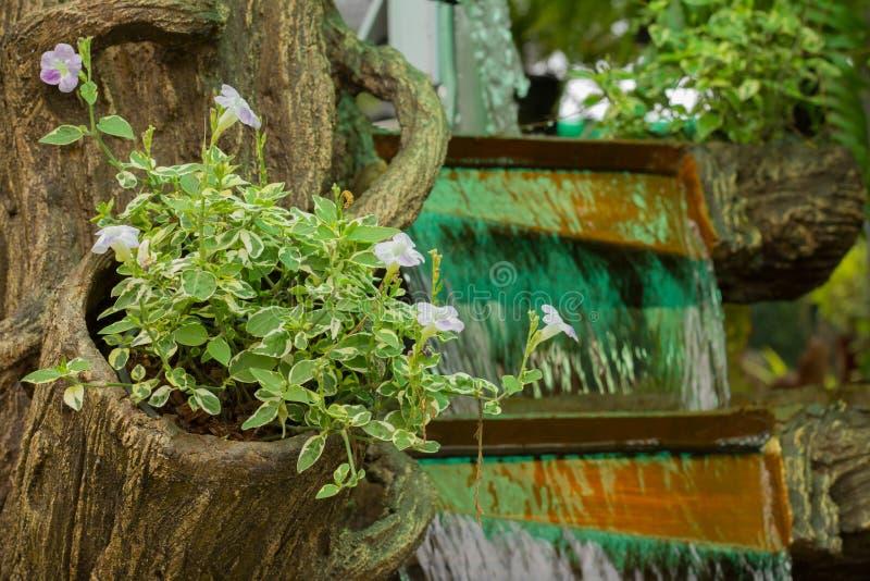 Drzewa w siklawa ogródzie zdjęcie stock