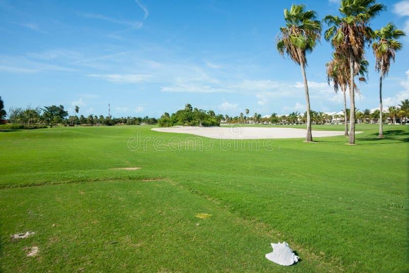 Drzewka palmowe ciskający ocieniają nad pole golfowe farwaterem z piaska bunkierem zdjęcia stock