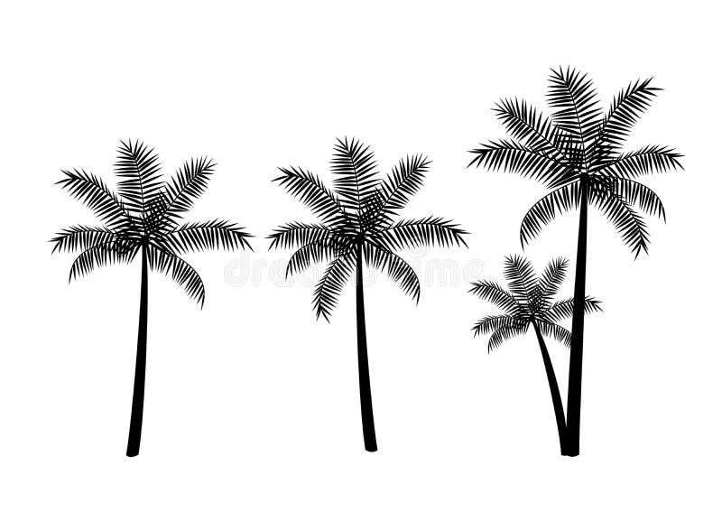 Drzewka palmowe, czarne sylwetki odizolowywać na białym tle ilustracja wektor