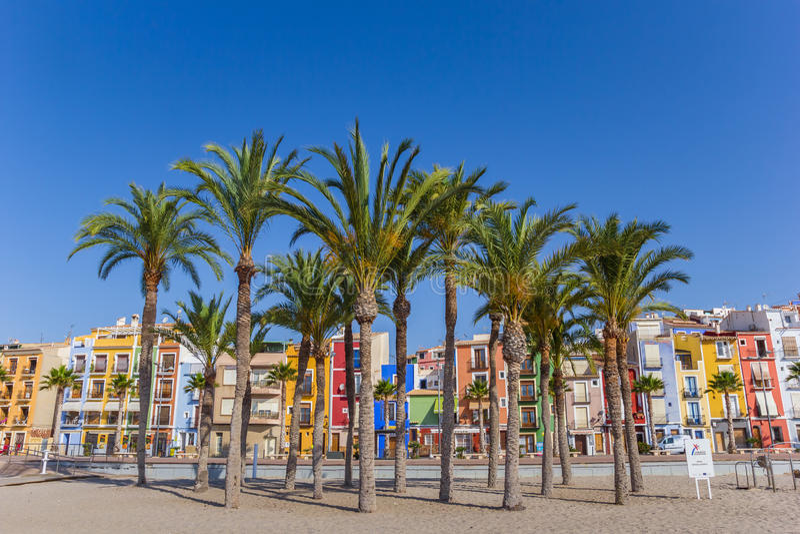 Drzewka palmowe i kolorowi domy przy plażą Villajoyosa obrazy stock