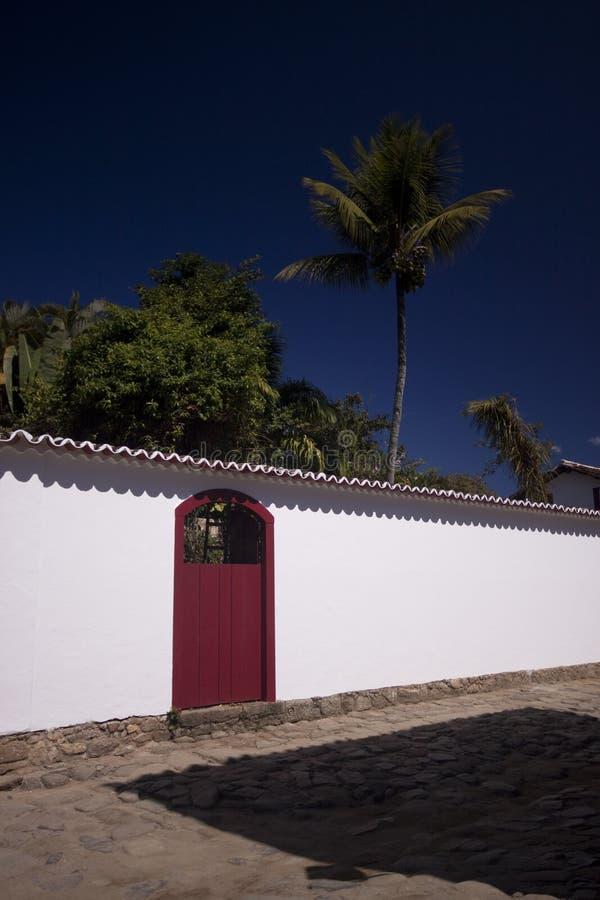 drzewka palmowe izolują biel zdjęcia stock