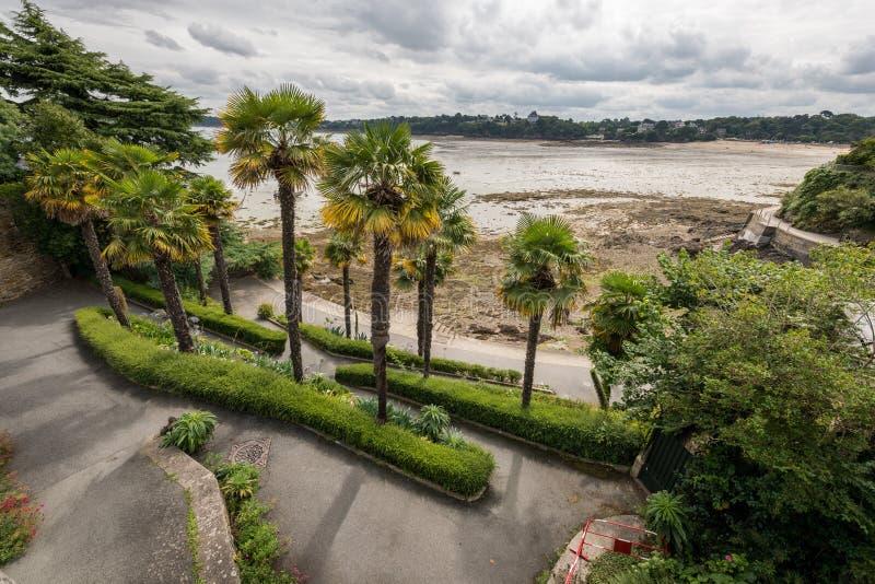Drzewka palmowe na deptaku Clair De Lune w Dinard zdjęcie royalty free