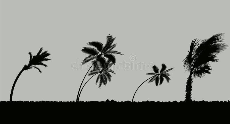 Drzewka palmowe podczas burzy i huraganu Liście latają przez niebo od burzy również zwrócić corel ilustracji wektora royalty ilustracja