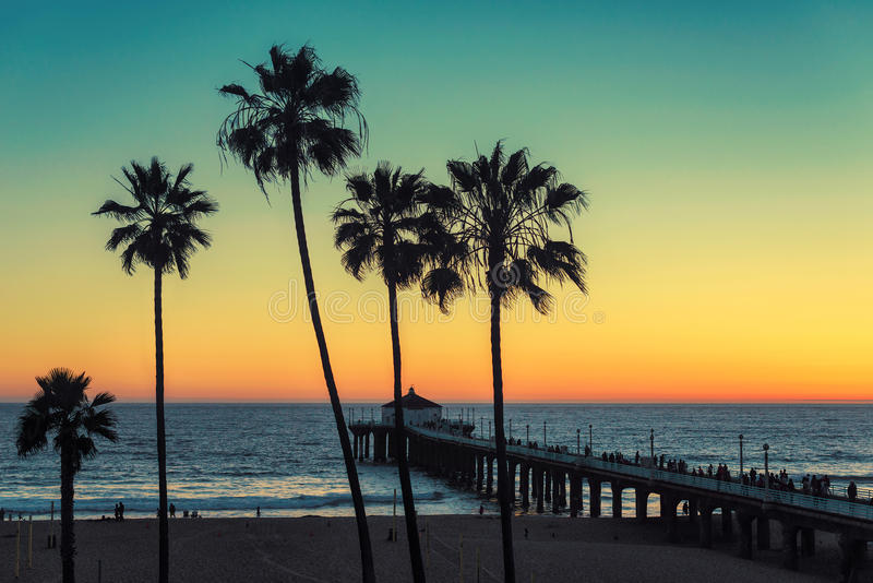 Drzewka palmowe przy Kalifornia plażą Rocznik przetwarzający zdjęcia royalty free